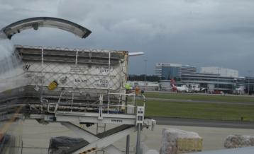 747 Freighter Unloading